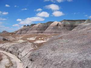Petrified Forest & Painted Desert National Park