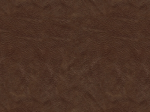 Immagini Stock Carta Da Parati Del Damasco Image19247504 moreover File Blue City additionally Beige Wallpapers besides Sunburst Brown Blue Burst Rays C2 7fffd4 D2b48c K2 50 50 L2 28 0 A 6 F 22 Image together with Wood Leather Wallpaper. on tan background wallpaper