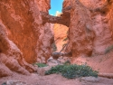 Bryce-Canyon-Nationalpark